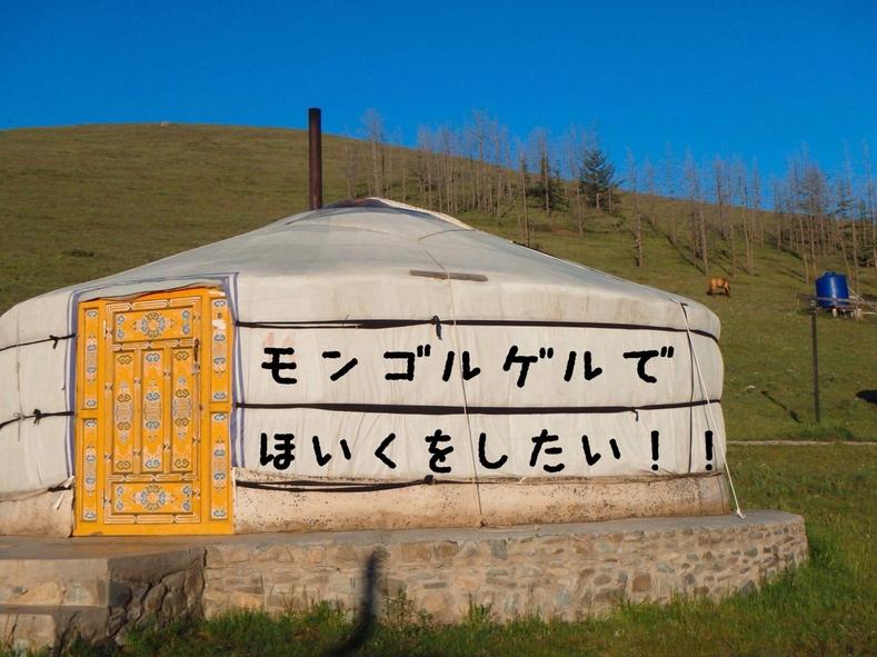 モンゴルゲルでほいくをしたい!